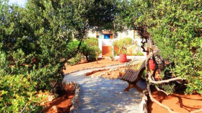 Photos of the Hotel | Zorbas Beach Village Hotel